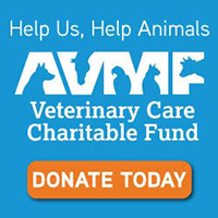 AVMF affiliated emergency veterinary hospital